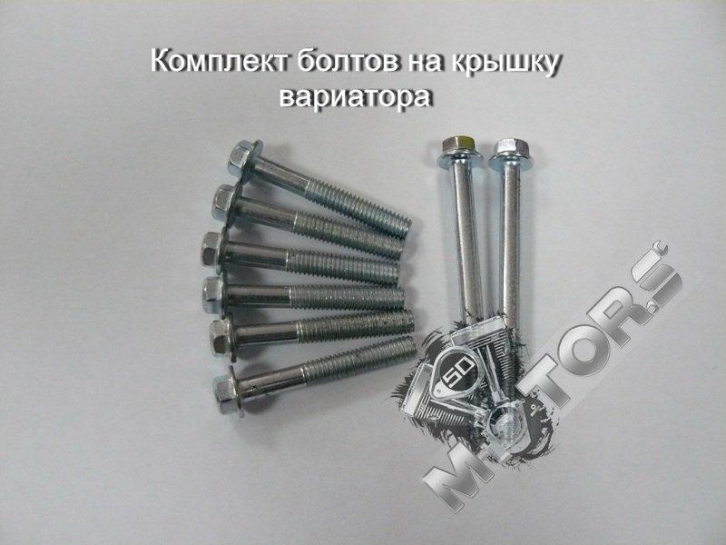 Комплект болтов на крышку вариатора модель двигателя 4т 139QMB