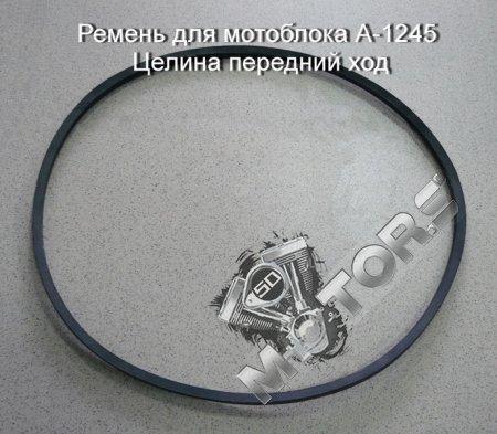 Ремень для мотоблока модель А-1245  м/б Целина передний ход