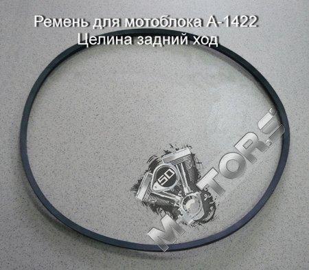Ремень для мотоблока модель А-1422  м/б Целина задний ход