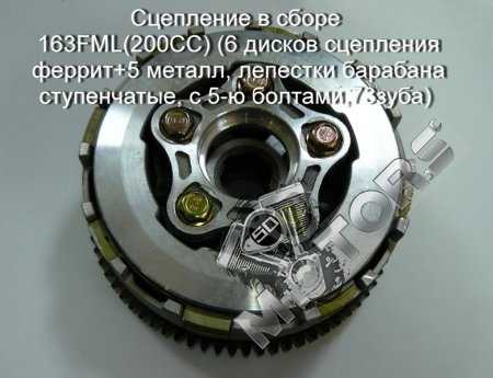 Сцепление в сборе 163FML(200CC)(6 дисков сцепления феррит+5 металл, лепестки барабана ступенчатые, с 5-ю болтами,73зуба)