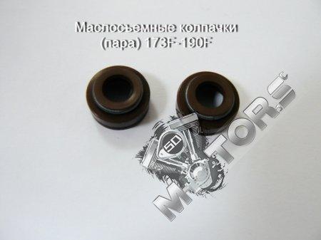 Маслосъемные колпачки (пара) 173F-190F